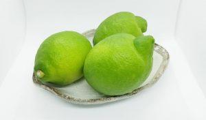観音山レモン